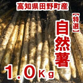【ふるさと納税】≪予約受付中≫四国一小さなまち田野町産特選「令和2年産自然薯(じねんじょ)」1.0Kg 全然粘りが違います。汁物にしても溶けない粘りの強さを是非ご賞味ください。