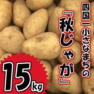 【ふるさと納税】〜四国一小さなまちのじゃがいも〜 高知県田野町の大野台地で採れた令和2年産秋じゃが 15kg! 型崩れが少なく、カレーや肉じゃがなどの煮物に最適です。