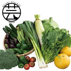 【ふるさと納税】野菜詰合せ<高知 芸西村 かっぱ市 野菜>