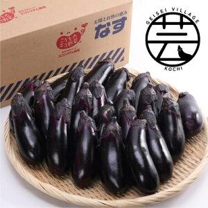 【ふるさと納税】エコシステム栽培 芸西なす 約5kg<高知 芸西村 かっぱ市 なす>