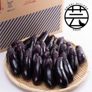 【ふるさと納税】エコシステム栽培 芸西なす 約10kg<高知 芸西村 かっぱ市 なす>