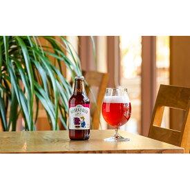 【ふるさと納税】清流 汗見川流域の赤しそで作ったクラフトビール TOSA REIHOKU BEER 赤しそサワーエール(嶺北地区限定ラベル) 6本セット 【お酒・地ビール・ビール・クラフトビール・赤しそ】 お届け:年内発送は12月28日まで、年明けは1月7日より順次発送