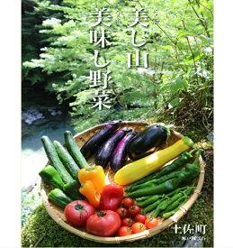 【ふるさと納税】土佐れいほく野菜(1回のお届け)
