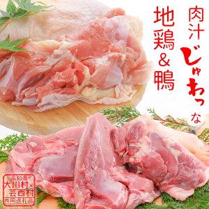 【ふるさと納税】土佐はちきん地鶏もも肉&土佐鴨ロース・モモ肉セット 【定期便】 高知県大川村 芸西村 はちきん地鶏 もも肉 3枚 700~800g 合鴨 1kg ロース もも肉