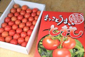 【ふるさと納税】水田さんのまっことうまいトマト 約2kg【高知県産 トマト フルーツトマト】