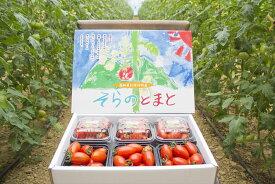 【ふるさと納税】(Ba27-1) そらのミニトマト約1.2kg