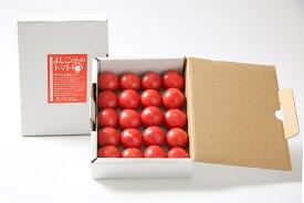 【ふるさと納税】(0101101)無加温で収穫する 夏秋限定の [よしこさんのトマト](1kg/1箱)※令和3年7月中旬以降発送予定 選果の過程で規格外として選り分けられたトマトですが味は「てっぺんとまと」そのもの。