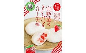 【ふるさと納税】完熟苺のとろけるクリーム大福(16個入り) 和菓子 和スイーツ いちご大福