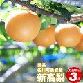 新高梨3玉