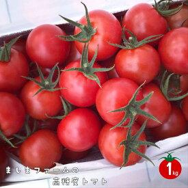 【ふるさと納税】<アイメックで育てたましまファームの高糖度トマト】>高知県 佐川町 ましまファーム フルティカ ミニトマト フルーツトマト 約1kg 2020年12月以降出荷分受付中 先行予約【常温】送料無料