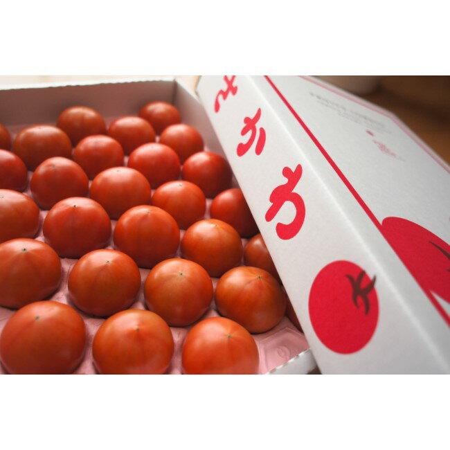 【ふるさと納税】<フルーツトマト 約1.6kg×1箱>高知県 佐川町 トマトハウスナカムラ 予約販売受付中 12月下旬発送 野菜【常温】