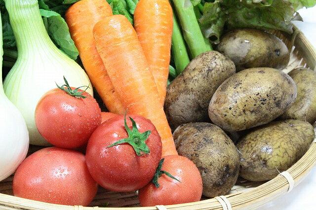 【ふるさと納税】越知町産季節の野菜セット(年3回発送)