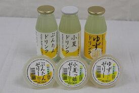 【ふるさと納税】柑橘ドリンク・ゼリーセット