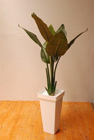 【ふるさと納税】ストレチア(造花)