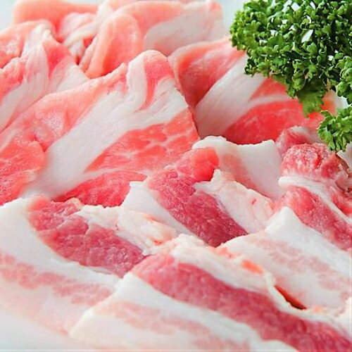 【ふるさと納税】Qjs-02 仁井田米で育ったブランド豚「しまんと米豚焼き肉セット」