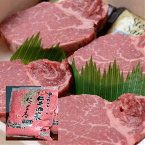 【ふるさと納税】Asz-11 四万十麦酒牛(しまんとビールぎゅう)のヒレステーキとお米セット