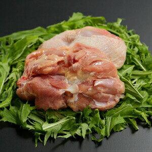 【ふるさと納税】Adf-30 ★高知育ちの銘柄鶏 四万十鶏★ もも肉 2kg