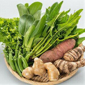 【ふるさと納税】Fkh-06 農薬不使用・しまんと流域野菜セット( 7種類)+野菜に合う調味料等1品