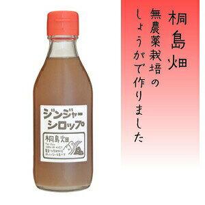 【ふるさと納税】Fkh-08 無農薬生姜で作ったパンチのきいた桐島畑のジンジャーシロップ 400ml×1本