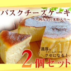 【ふるさと納税】Bmu-64 バスクチーズケーキ〜四万十の米粉入り〜2個セット