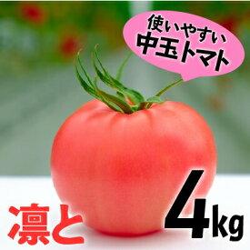 【ふるさと納税】【予約受付】受付4か月で800件超え四万十産トマト「凛と」Fbg-03