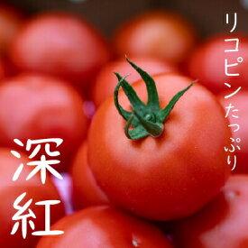 【ふるさと納税】【予約受付】赤さがリコピン満載の証!四万十産トマト「深紅」4kg Fbg-06