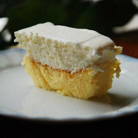 【ふるさと納税】Wチーズケーキ