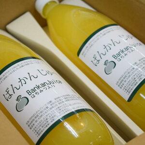 【ふるさと納税】柑橘「河内ばんかん」果汁と蜂蜜だけで作ったジュース2本セット