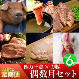 【ふるさと納税】【定期便】四万十鶏 × 力豚 年6回お届け