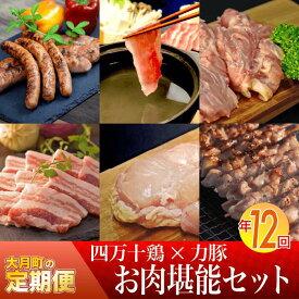 【ふるさと納税】【定期便】大月のお肉が堪能できるセット 年12回お届け