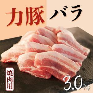 【ふるさと納税】大月町産ブランド豚!力豚バラ 焼き肉用3kg