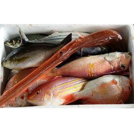 【ふるさと納税】[1066]土佐湾鮮魚のお造りセット B