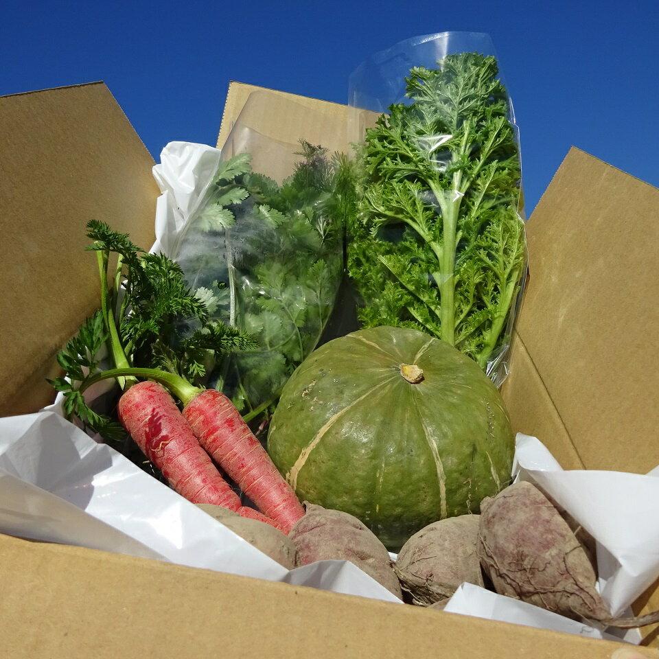 【ふるさと納税】[0922]リタ・ファームの露地野菜セット