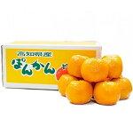 【ふるさと納税】[1184]植田農園のポンカン10kg高知県産(ご家庭用)