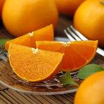 【ふるさと納税】[1200]高級柑橘温室せとか秀2L品12個入り