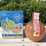 【ふるさと納税】[1414]土佐グァバのお酒(リキュール)360ml