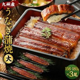【ふるさと納税】九州産うなぎ蒲焼大3尾(1尾あたり156〜189g)