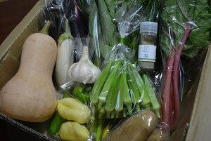 【ふるさと納税】季節のお野菜とバジル塩セット