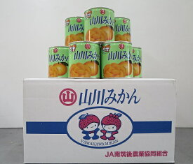 【ふるさと納税】山川みかん缶詰 24缶セット