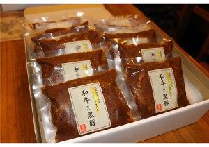 【ふるさと納税】黒毛和牛&黒豚デミグラスソースハンバーグ10個セット