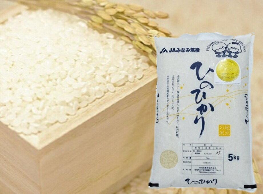【ふるさと納税】新米ひのひかり(10キロ)(平成29年産)