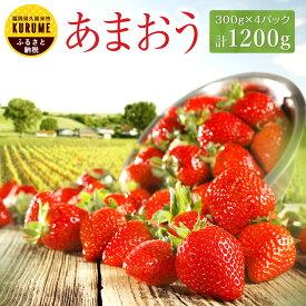 【ふるさと納税】あまおう 300g×4パック 計1200g エコファーマー イチゴ いちご 苺 果物 くだもの フルーツ 福岡県産 九州 送料無料