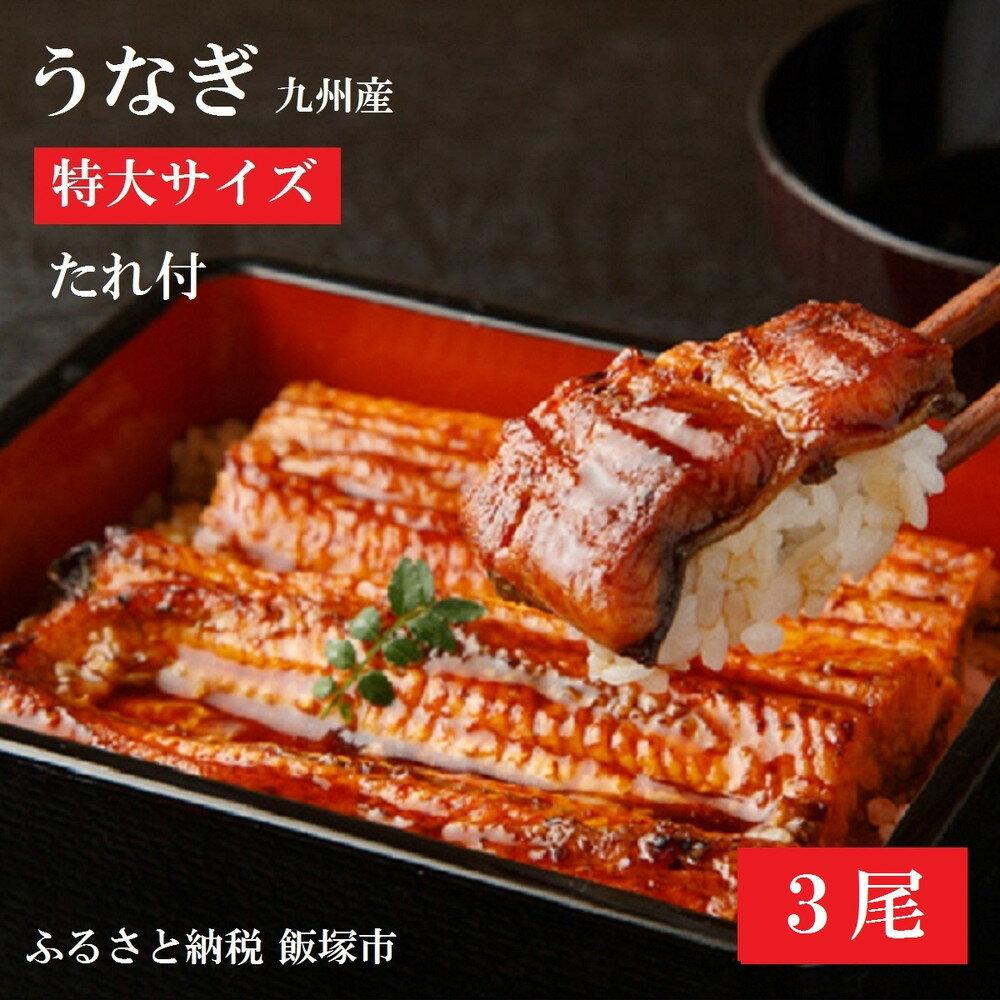 【ふるさと納税】【A5-001】魚市場厳選 九州産うなぎ蒲焼(特大サイズ3尾)