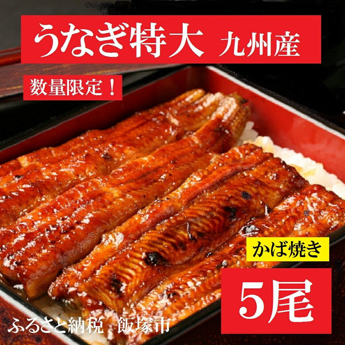 【ふるさと納税】【B5-002】魚市場厳選 九州産うなぎ蒲焼(特大サイズ5尾)