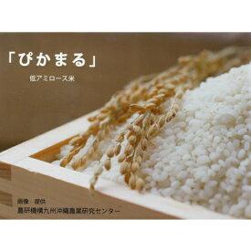 【ふるさと納税】令和元年産米 無農薬 低アミロース米「ぴかまる」<5kg>玄米