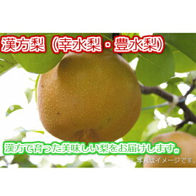 【ふるさと納税】旬の梨(幸水梨・豊水梨)<6〜7個入> 漢方で育った美味しい梨