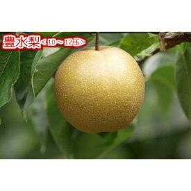 【ふるさと納税】豊水梨<10〜12玉>