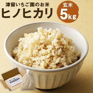 【ふるさと納税】ひのひかり 5kg 玄米 お米 ヒノヒカリ 栽培期間中無農薬 九州産 福岡県産 送料無料