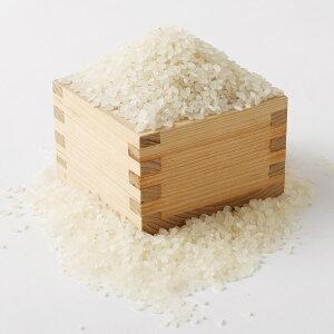 【ふるさと納税】ひのひかり5kg白米精米お米ヒノヒカリ栽培期間中無農薬九州産福岡県産送料無料