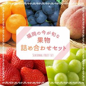【ふるさと納税】今が旬な地元産の果物詰め合わせセットおまかせランダムフルーツ果物詰め合わせセット送料無料